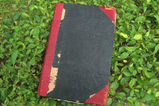 diary 1
